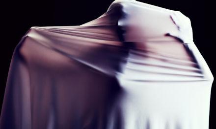 The Face Thief by Ella Anañeva